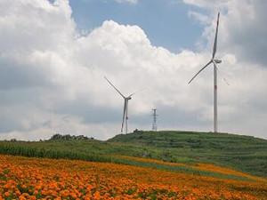 华能新能源2月风电发电量达21.46亿千瓦时
