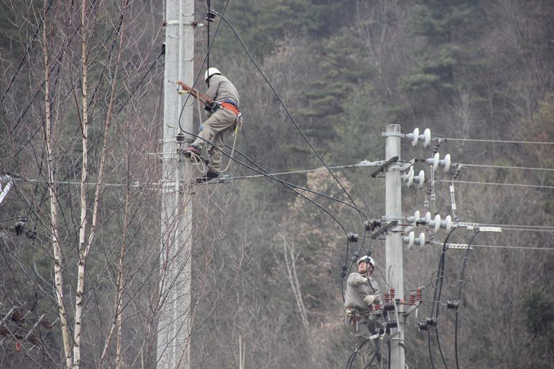 陕西地电留坝供电分公司:实施农石线、索道线分网改造