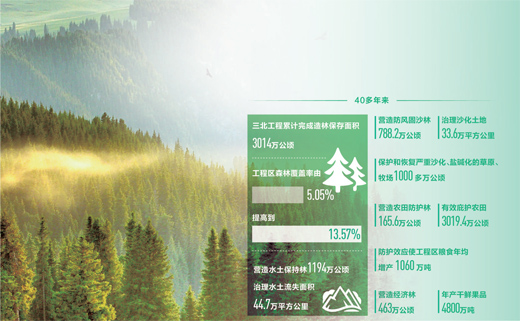 三北工程造林保存面积超3000万公顷